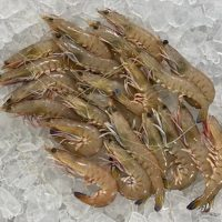 Green King Prawns bags and by kilo.1
